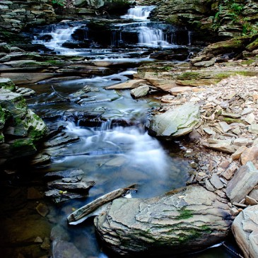 Waterfalls At Ricketts Glen