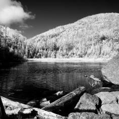 Lake Arnold