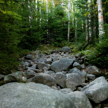 The trail to Algonquin: rocky & steep