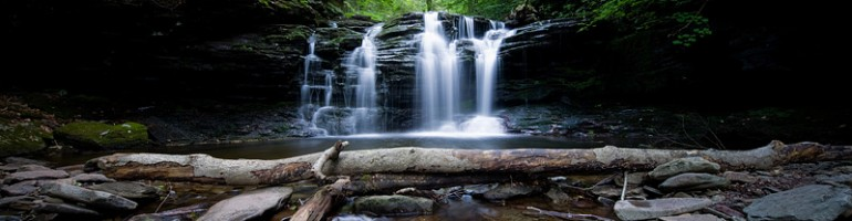 Ricketts Glen Summertime Hike