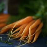 Carrots at the Keene Valley farmer's market
