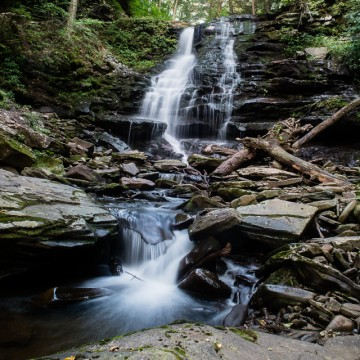 Ricketts Glen, Early Summer Morning