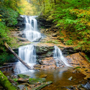 Ricketts Glen, Autumn