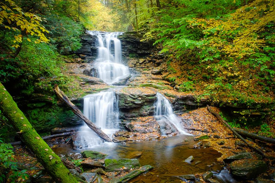 Ricketts Glen, Autumn
