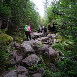 Ten Fine Hikes in the Adirondacks