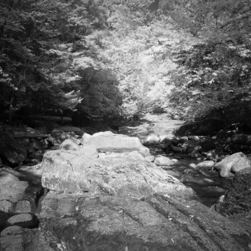 At the foot of the Shanty Brook, Adirondack Park, New York.