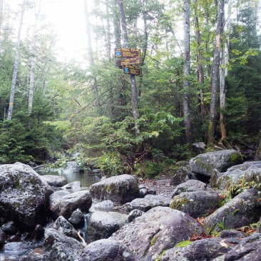 Junction to Indian Falls and Lake Arnold