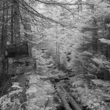 Bartlett Ridge