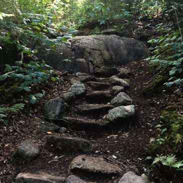Staircase on Gill Brook trail
