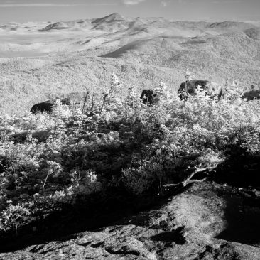 Whiteface Mt. from Basin (infrared)