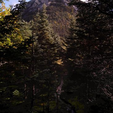 Saddleback (with 'cliffs')