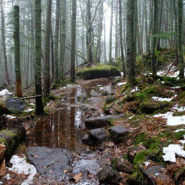 Submerged trail