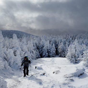 Ascending Cascade