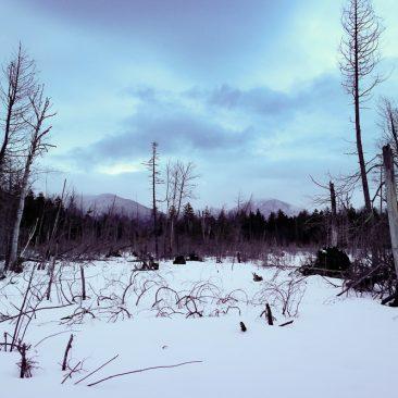 Redfield & Allen/snowstorm clearing