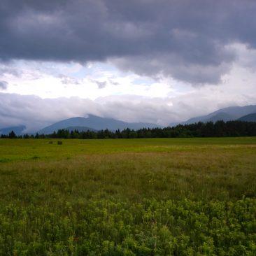 North Meadows