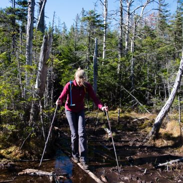 Kathy carefully navigating the Couchsachraga bog