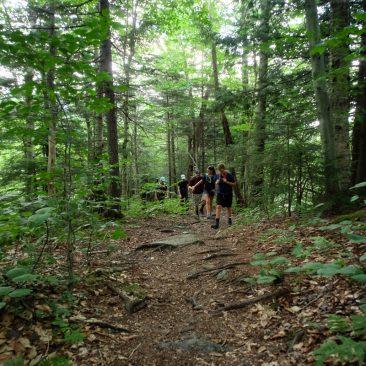 The pretty Haselton Trail